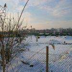 Schnee Huschu 2010 082