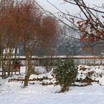Schnee Huschu 2010 107