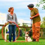 Hundeschule Breloer Cross Dogging (33 von 102)